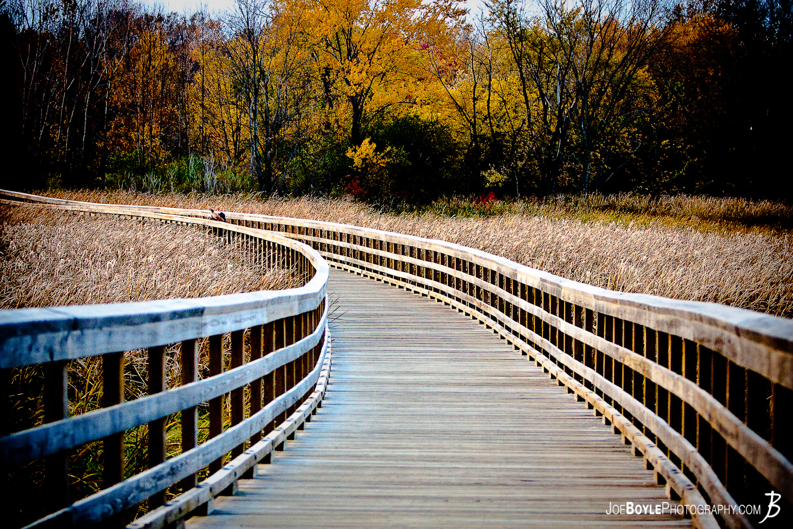 I was on a short hike with a few friends when I took this picture. I really loved the curving lines of the bridge (or walkway) throughout the field and I was lucky that there weren't very many people on it!
