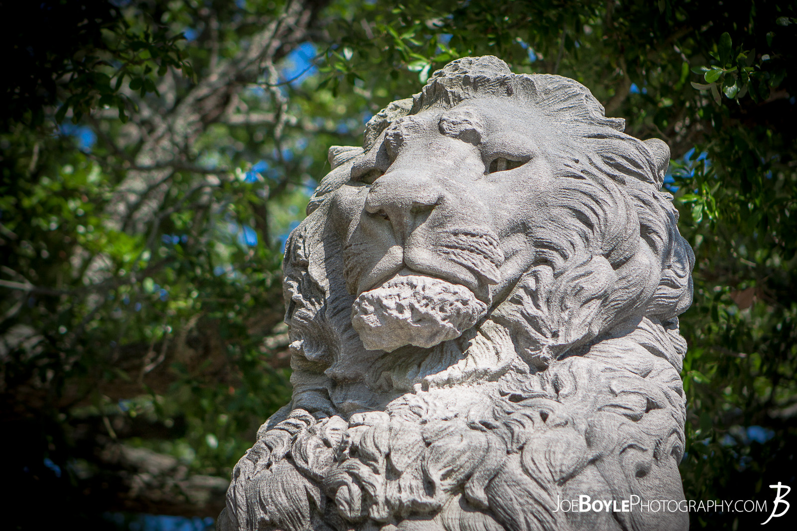 When I was visiting friends in Virginia this past summer we made it a point to see some of the historical sites in the area. One of which included the Mariner's Museum. This is an image of 1 of the 4 Lion Statues on the bridge, which is really a dam that creates Lake Maury and provides a great view of the James River.