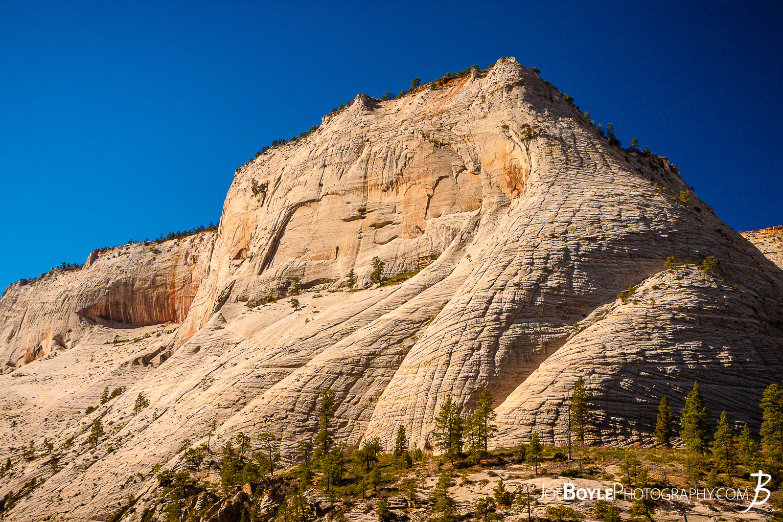 While hiking on the West Rim Trail in Zion National Park my hiking buddy and I were able to see many mountains, canyons and valleys! This is a photo of a canyon cliff face we saw along our way! We spent a few nights hiking this trail to the end of the West Rim Trail. We finished up this leg of the trip hiking Angel's Landing and exited at The Grotto.  Here are some links to more articles and hiking info about the West Rim Trail and hiking trails in Zion National Park and a Map of Zion National Park.