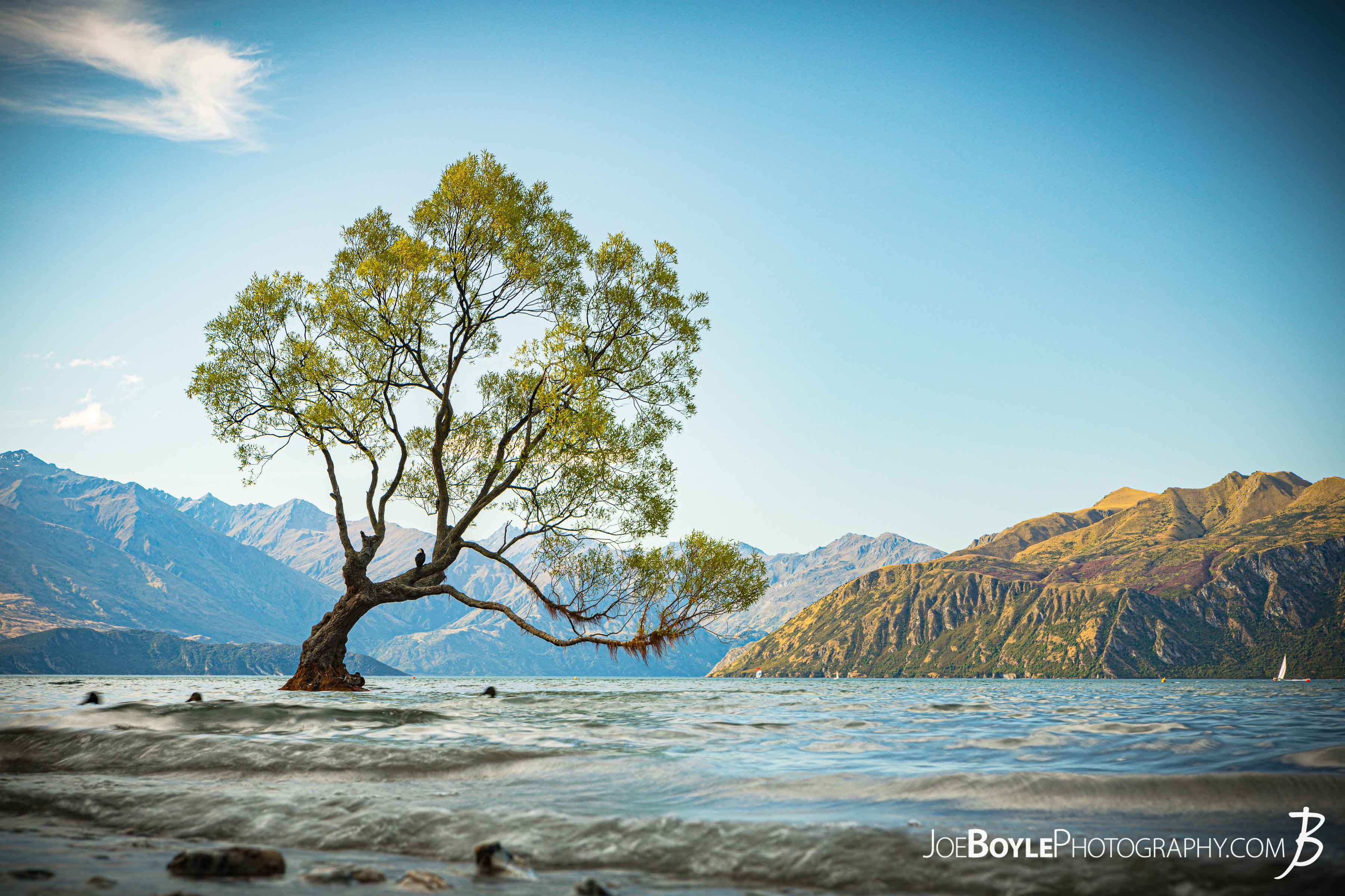 "Here is a photo of ""That Wanaka Tree"" in Wanaka, New Zealand! (Of course it's in Wanaka!) This is a really famous subject to photograph. I think the allure is that it's one tree about 50 meters out from the shore and it's just there. Standing. The test of time. I actually didn't even know about it but that's not really surprising. Yea it was cool. I just LOVE the mountains more but I give props you to little tree. You're beautiful too and so is Wanaka!"