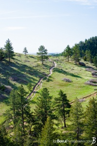 boulder-colorado-park-green-field-path-chautauqua-state-park
