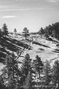 -boulder-colorado-park-field-path-black-white-chautauqua-state-park