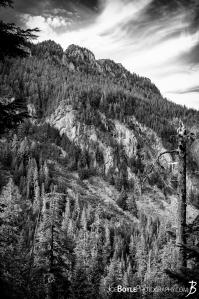 landscape-near-fay-peak-wonderland-trail-black-white