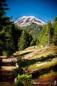 mount-rainier-on-the-wonderland-trail-near-indian-bar-portrait