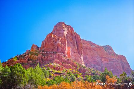 canyon-and-pillar-on-the-kolob-canyon-trail