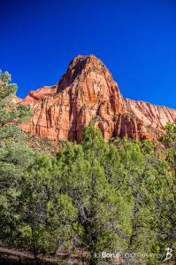 canyon-and-pillar-on-the-kolob-canyon-trail-ii