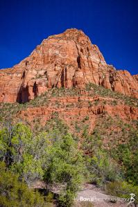 canyon-and-pillar-on-the-kolob-canyon-trail-ii-portrait