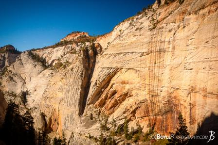 canyon-wall-cliff-face-on-the-west-rim-trail-in-zion-national-park-ii
