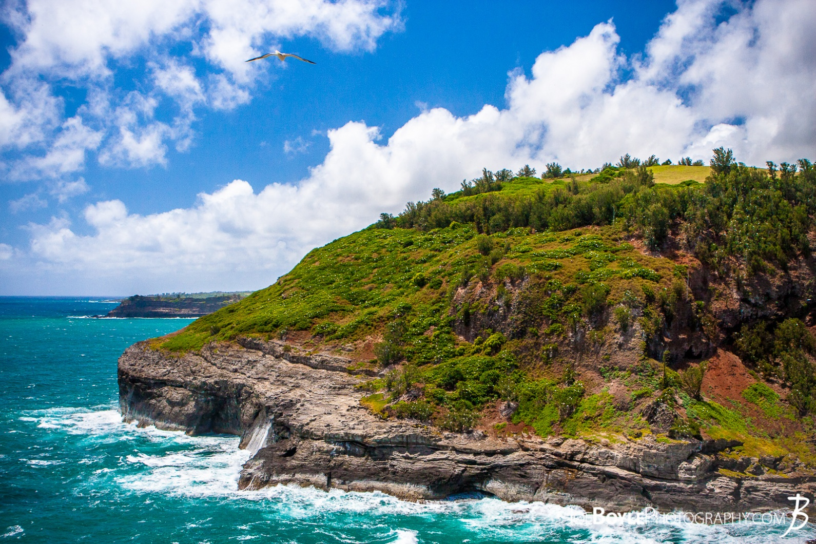 hawaii-coastline-blue-water-green-grass