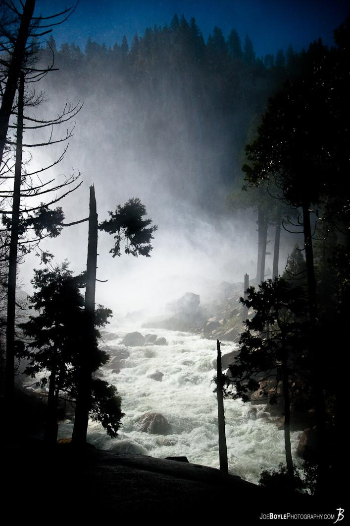 mist-through-the-trees