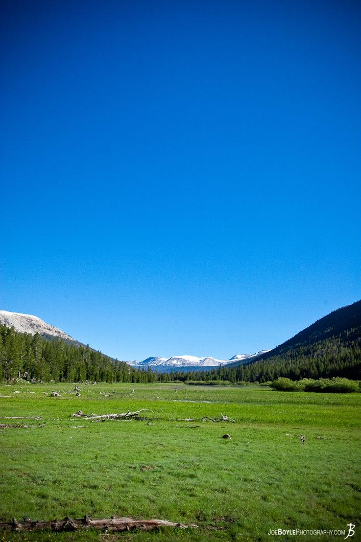green-field-with-mountain