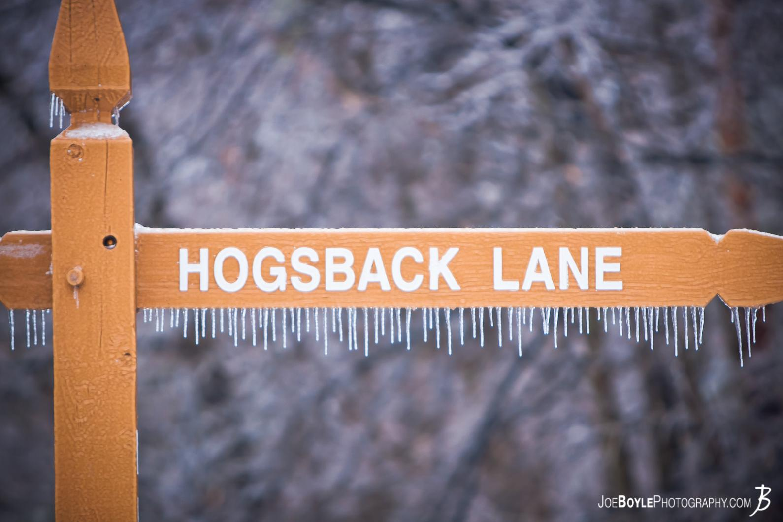 hogsback-lane-in-the-metroparks