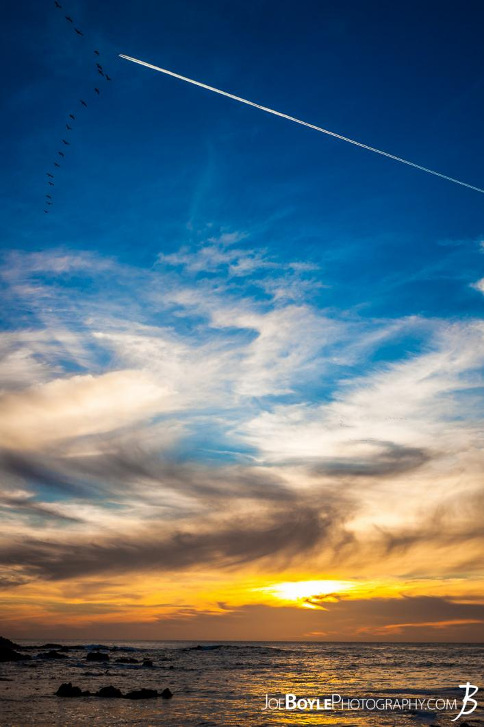 sunset-in-pacific-grove-with-birds-plane