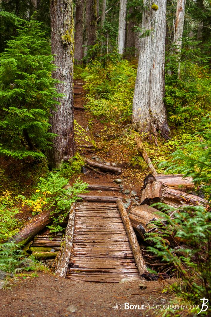 foot-trail-bridge-on-the-wonderland-trail