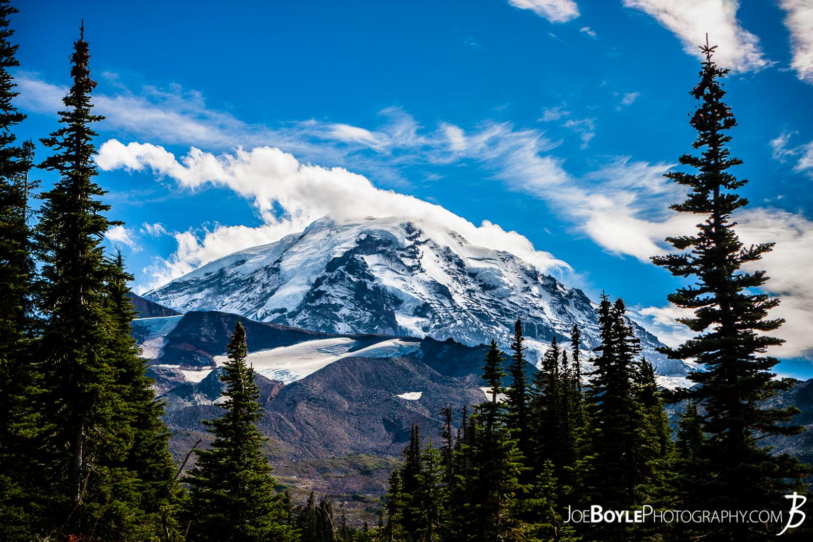 mount-rainier-from-spray-park-trail-with-trees