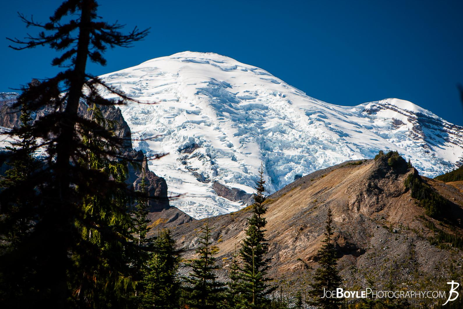mount-rainier-with-trees-and-rocks-near-panhandle-gap