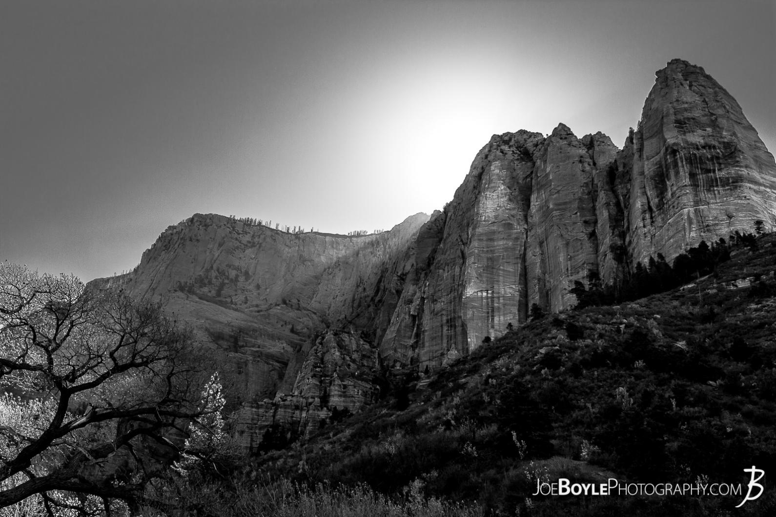 canyon-and-pillars-on-the-kolob-canyon-trail-black-white