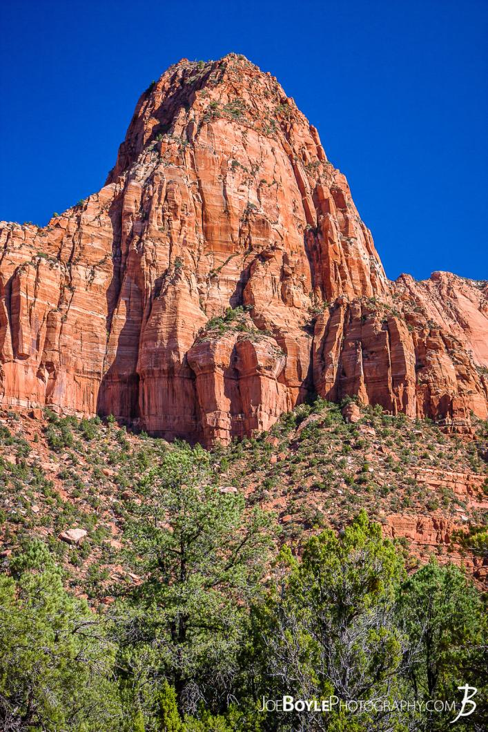 canyon-and-pillar-on-the-kolob-canyon-trail-iii