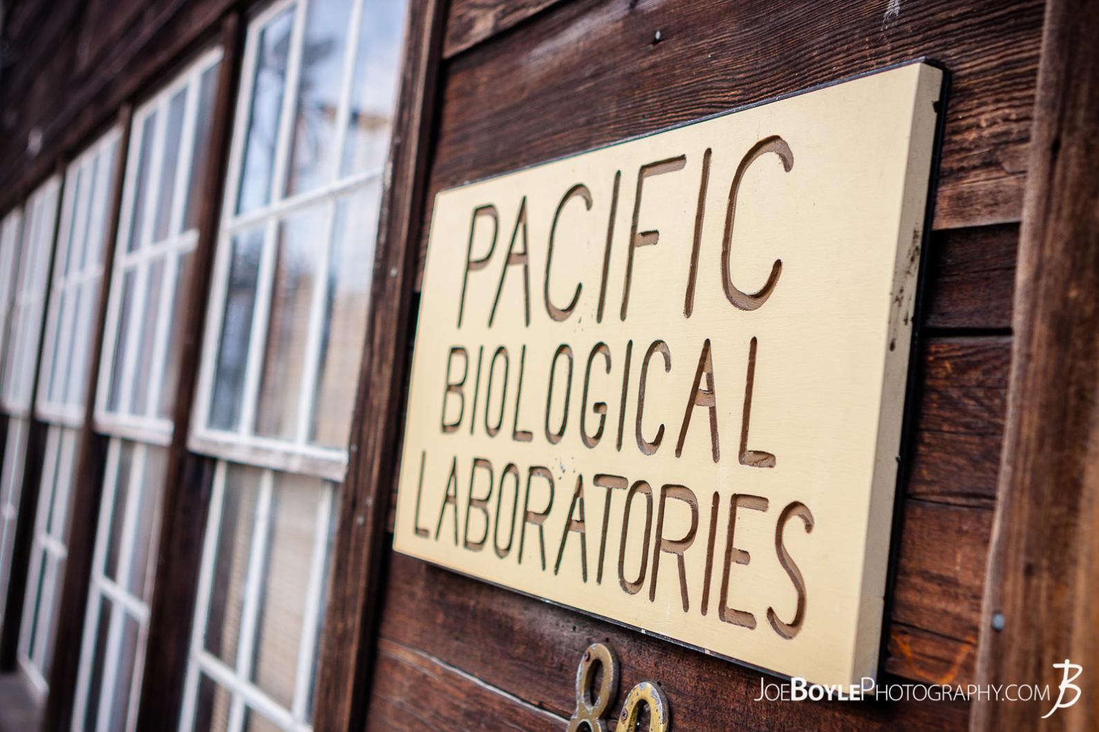 sign-of-pacific-biological-laboratories-cannery-row-monterey-california