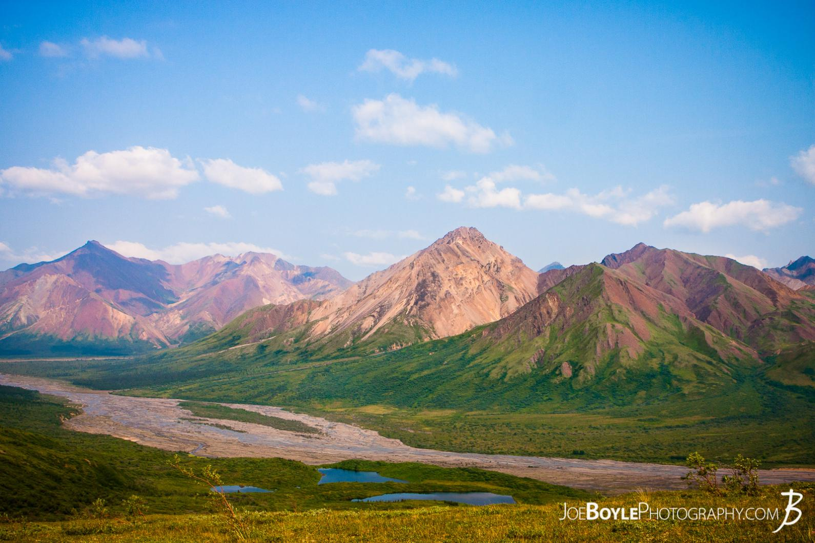 denali-national-park-mountains-fields-blue-sky-in-grid-6
