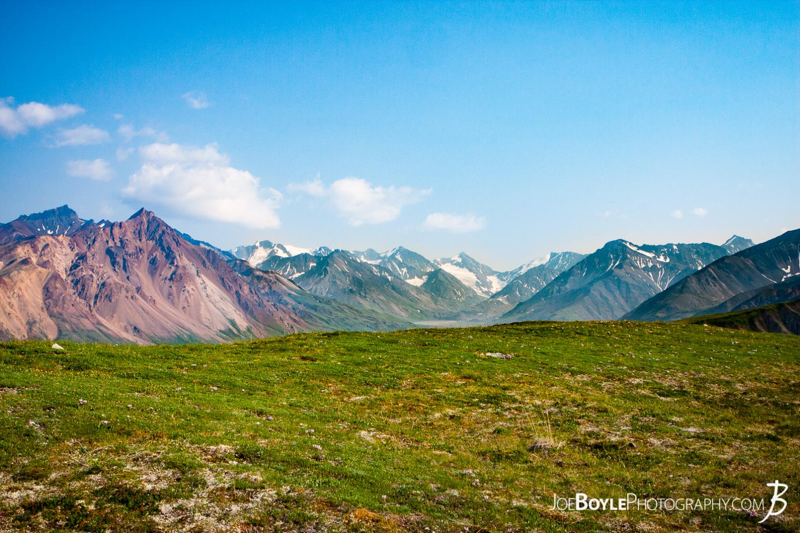 mountains-green-field-and-blue-sky-in-denali-national-park-grid-6
